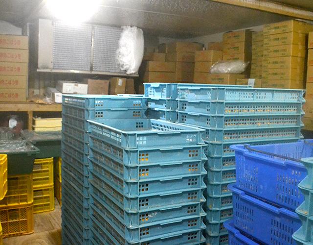 大型冷凍庫2台